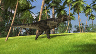 Tyrannosaurus Rex In A Grassy Field I