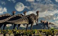 Hadrosaurid Duckbill Dinosaurs Use Soundwaves To Defend A Tyrannosaurus Rex I