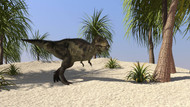 Tyrannosaurus Rex Hunting For Its Next Meal In The Desert I