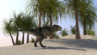 Tyrannosaurus Rex Hunting For Its Next Meal In The Desert III
