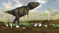Tyrannosaurus Rex Walking Across Desert Terrain I