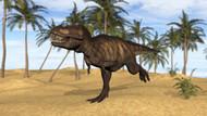 Tyrannosaurus Rex Running In A Prehistoric Environment I