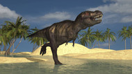 Tyrannosaurus Rex Running Through Shallow Water II