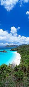 Trunk Bay Saint John USVI