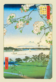 Cherry Blossoms by Hiroshige
