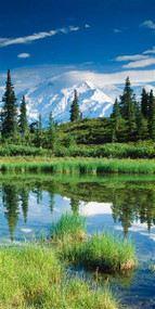 Mount McKinley with Pond