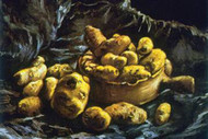 Earthen Bowls by Vincent Van Gogh