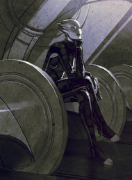 Mass Effect Wall Graphics: The Wait