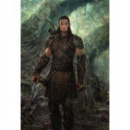 Dragon Age Wall Graphics: Elf Dalish