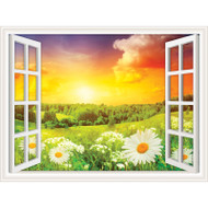Window Views Daisies in a Field