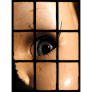 Window Views Doll Eye