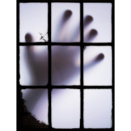 Window Views Ghost Hand