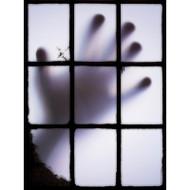 Window Views Ghost Hand