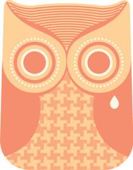 Owls Orange Crying