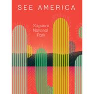 Saguaro National Park by Hanna Norris