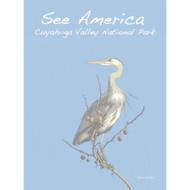 Great Blue Heron, Cuyahoga Valley National Park by Jennie Lambert