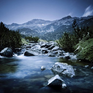 Small River Flowing Through Mountains Of Pirin National Park Bulgaria