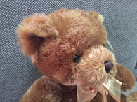 Korimco Eddie Brown Bear - with Satin bow