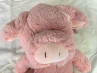 Keel Toys Floppy Pink Pig