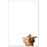 Golden Retriever Dog Pack 1