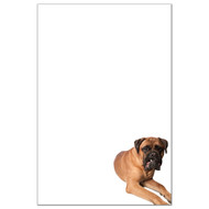 Bull Mastiff Dog Pack 1