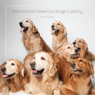 Golden Retriever Party Card