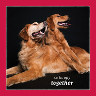 So Happy Together Goldens Love Card