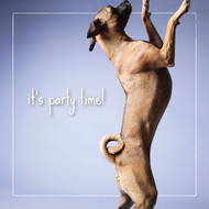 Nita's It's Party Time! Congratulations Card