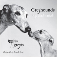 Greyhounds Big & Small: Iggies & Greyts