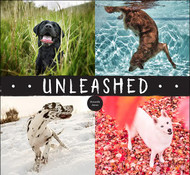 Unleashed by Amanda Jones