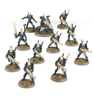 Eldar Black Guardians