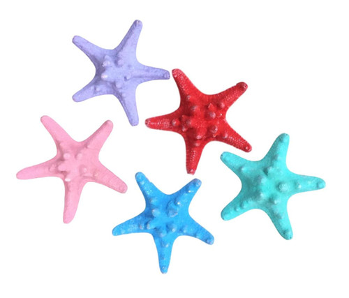 Mud Starfish Colored  Nautical Seasons