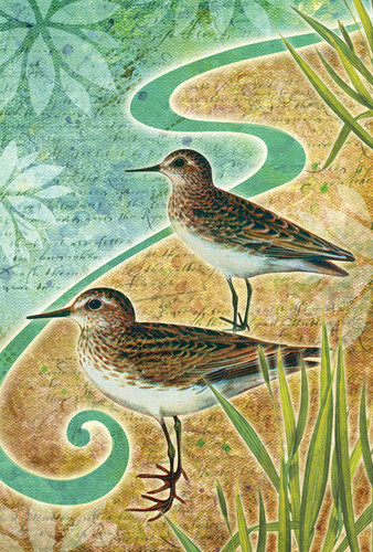 Sandpiper Sea Birds Garden Flag  Nautical  Seasons