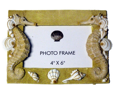Seahorse Picture Frame Nautical Seasons