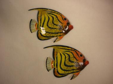 Tropical Fish Nautical Seasons