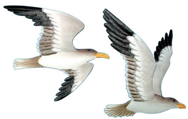 Wall Seagulls Set of 2  Nautical Seasons