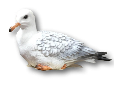Sea Gull Decoration  Nautical Seasons