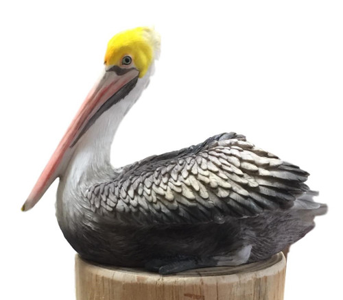 Pelican Decorative Sea Bird