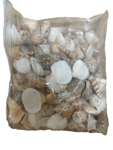 Bag of Sea Shells Nautical Seasons