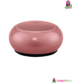 EWA A110 Mini Bluetooth Speaker - Rose