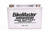 BikeMaster AGM Platinum II Battery 280 CCA 168L X 127W X 177H (HTX30L-FA)