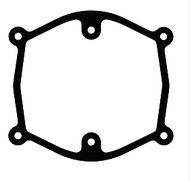 D10137537//Air Cleaner Gasket