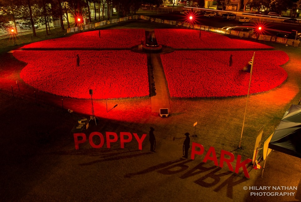 poppy-park-at-night.jpg