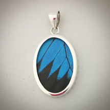 Sterling Silver and Ulysses Butterfly Wing Pendant