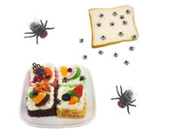 100 Fake Fly Prank Toys and Vending Prizes Approximately 100 per Pack