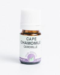 CAPE CHAMOMILE  (Eriocephalus punctulatus)