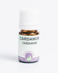 CARDAMOM (Elettaria cardamomum) Conventional