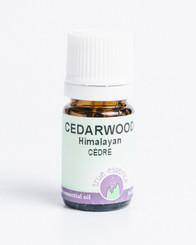 CEDARWOOD HIMALAYAN (Cedrus deodora)
