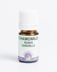 CHAMOMILE ROMAN (Chamaemelium nobile) Organic