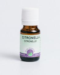 CITRONELLA (Cymbopogan nardus) Organic